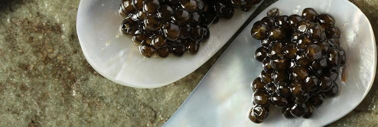 kaviar richtig servieren caspian caviar. Black Bedroom Furniture Sets. Home Design Ideas